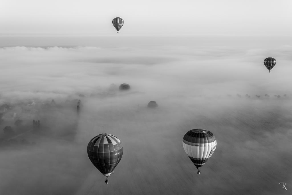 For Fog's Sake by ignuz