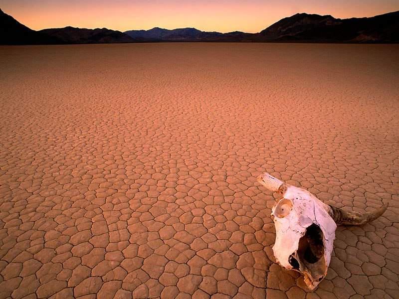 death water:
