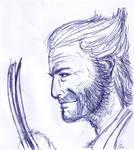 Wolverine biro sketch