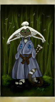 Last Airbender - Samurai Momo