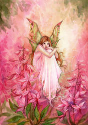 Pink Beauty by JannaFairyArt