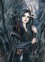 Morgaine by JannaFairyArt