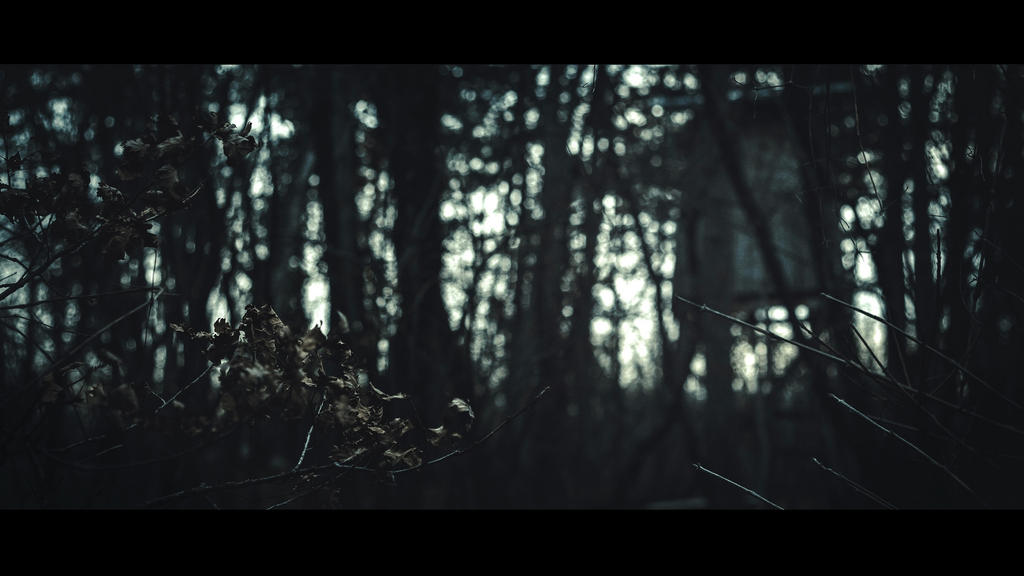Tree-house (Kopiraj) by Dark-Indigo
