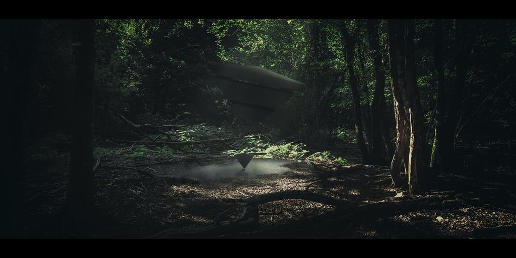 Triangle (Kopiraj) by Dark-Indigo