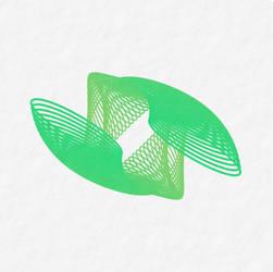 Dual shell by GeometricArt