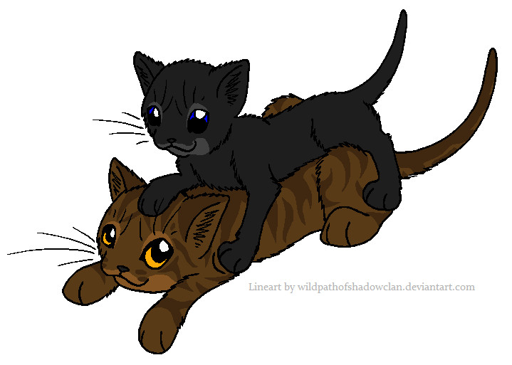 Brambleclaw and Robinpaw by lucymaggielover