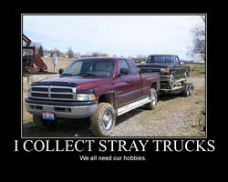 I Collect Stray Trucks