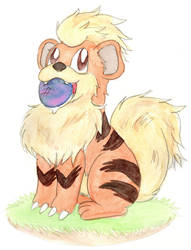 Growlithe by Enuwey