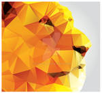 Geometric polygon lion head, profile