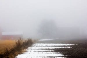Divided in the Fog by pubculture