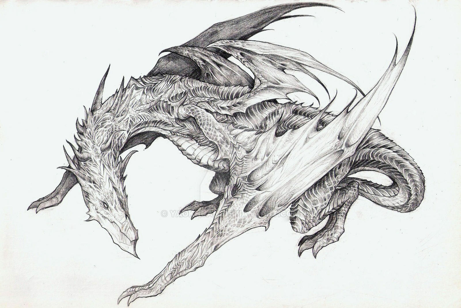 Dragon Concept Art by yaokhuan on DeviantArt