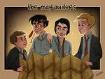 HP: Marauders