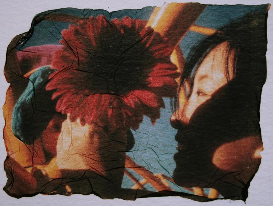 Shadow flower by ellejayess