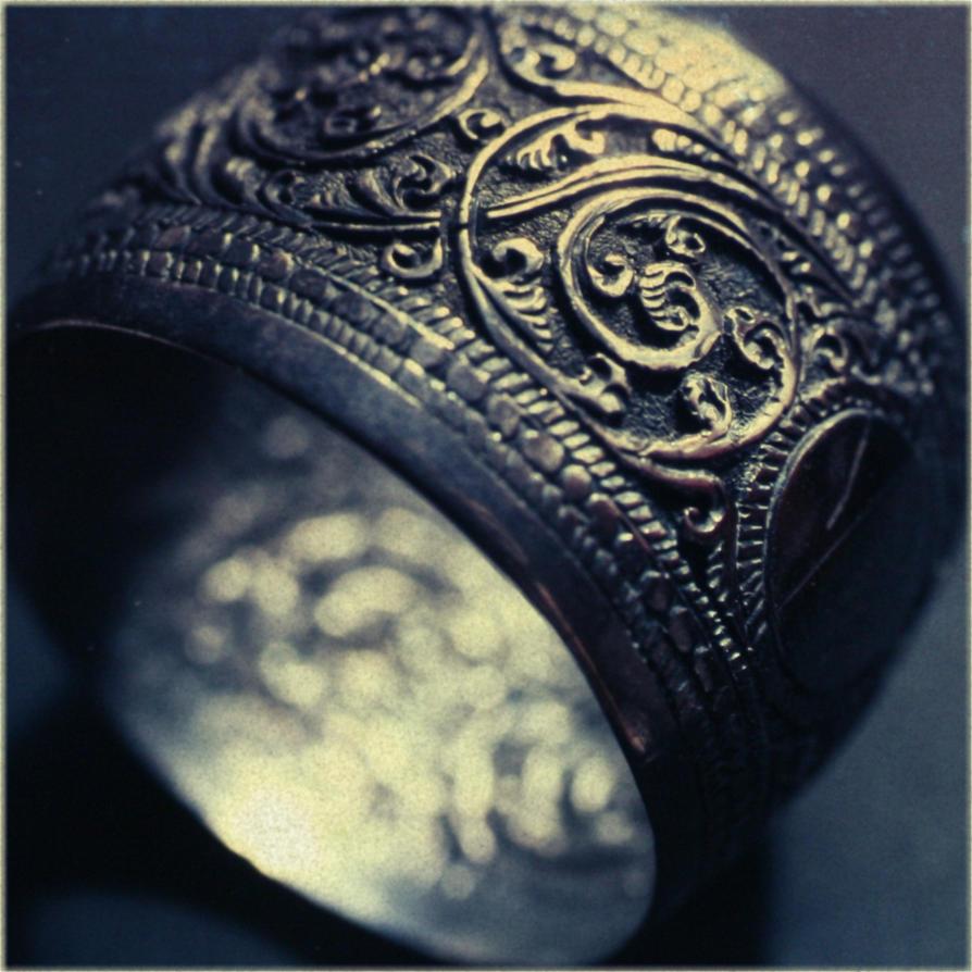 Silver Ring by ellejayess