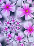 Fabric of Flowers