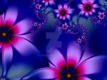 Night Flower for Rhonda
