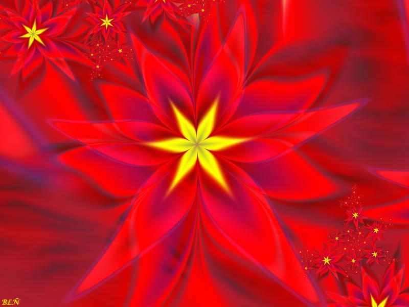 Christmas Flowers-Poinsettias by LaraBLN