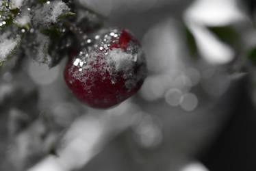 Fruit of Christmas by LaraBLN