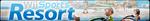Wii Sports Resort Fan Button by EdaTheOwlLady