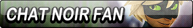 Chat Noir Fan Button