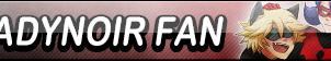 LadyNoir Fan Button by EclipsaButterfly