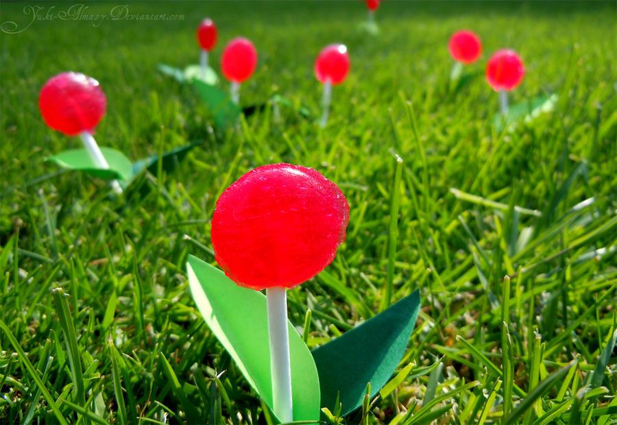 Lollipop Land by Yuki-Almasy