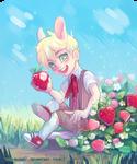 Berry BunBun