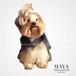 Polygon-Maya