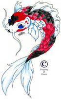 koi by PrismBaby