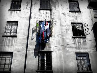 windows cloths