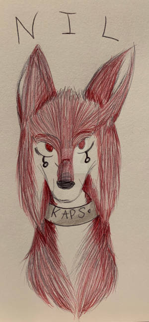 Little Red Wolf