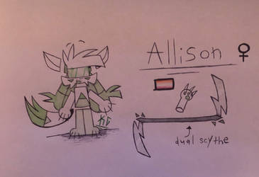 ALLISON REFERENCE SHEET