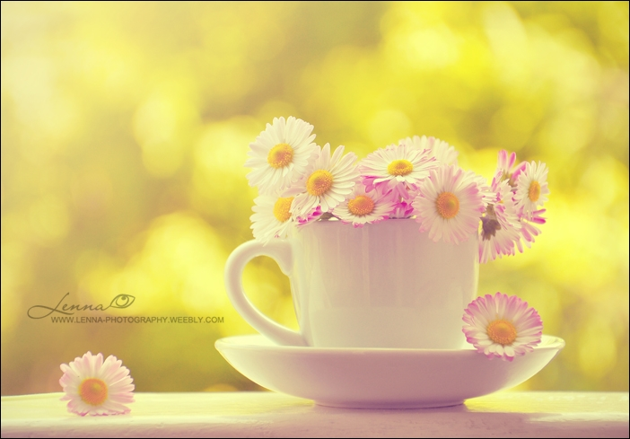 cup with flowers by lenna3 on deviantart