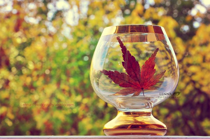 Celebrate Autumn by Lenna3