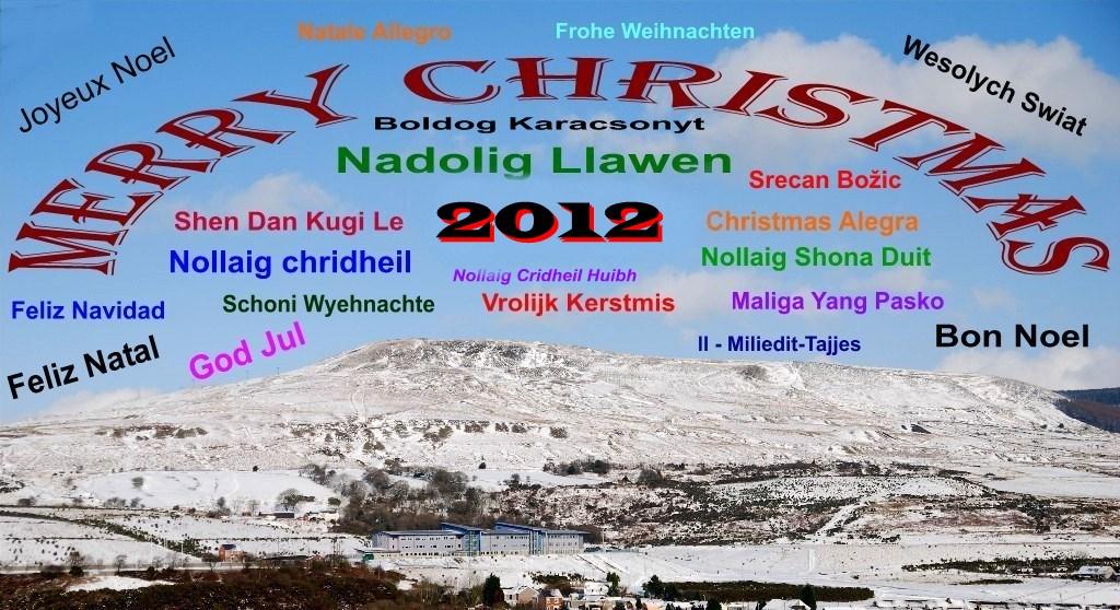 2012 Seasons Greetings by taramara