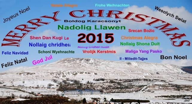 2015 Seasons Greetings