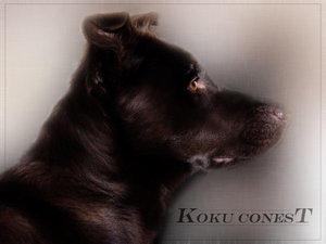 Koku Fix 1st, Directions 2nd
