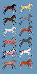 Foal Adoptables by csimiamigrl01