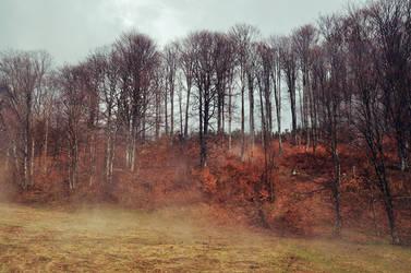 Fog by last0winged