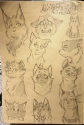 Varios, varios catos by ShastaWolf21