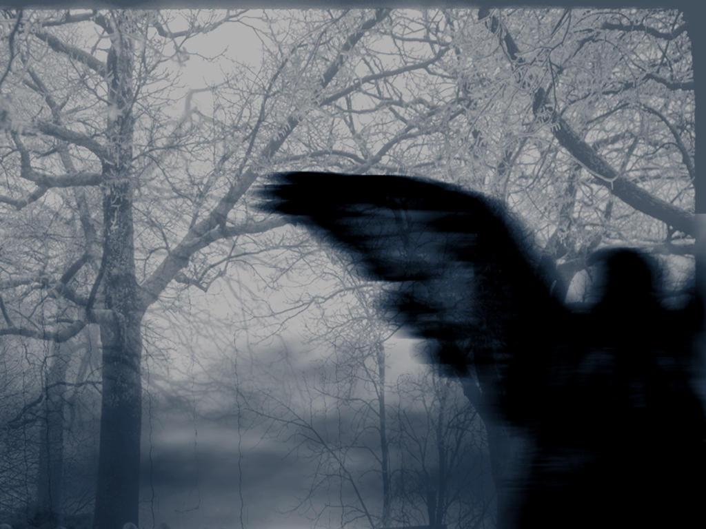 Divine Darkness by MistaBobby