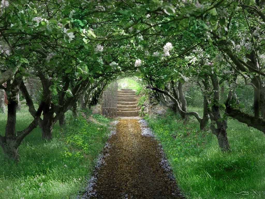 The Secret Garden by MistaBobby