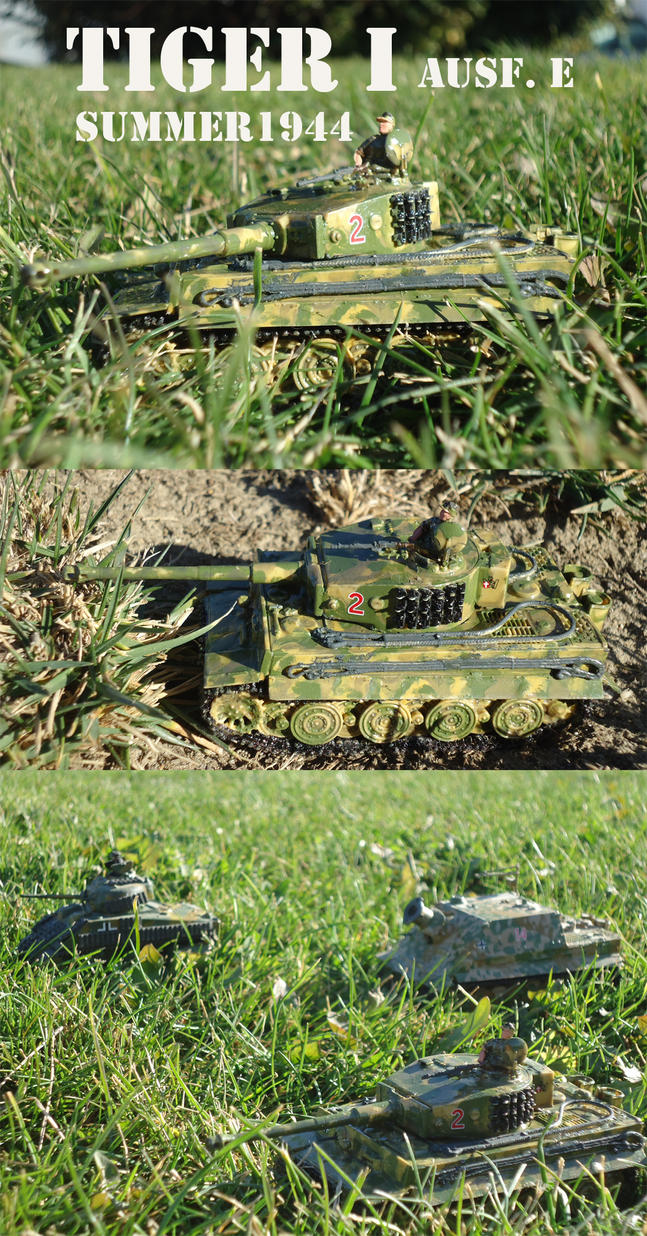 My 11th Tiger is operational by DingoPatagonico