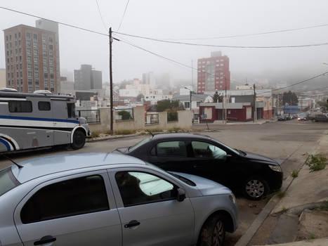 Foggy day again