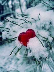 Winter love by street-rebel