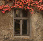 autumn window by mescamesh