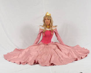 Princess Aurora sitting by AllenGale