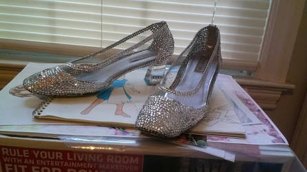 Cinderella on Broadway Glass Slippers by AllenGale