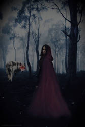 What lurks in the Woods