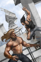 Wolverine vs Sabretooth by arashiro